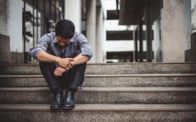 Premises of a Missouri Employment Discrimination Claim